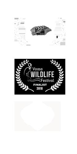 Tastyshots-film-award-carousel_02