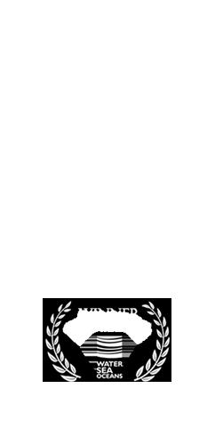 Tastyshots-film-award-carousel_05