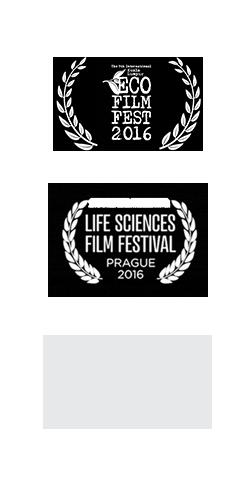 Tastyshots-film-award-carousel_07